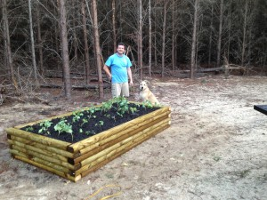farm raised bed 3