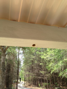 Carpenter Bee hole